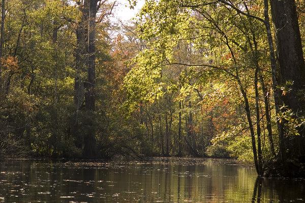 canoe trails in north carolina