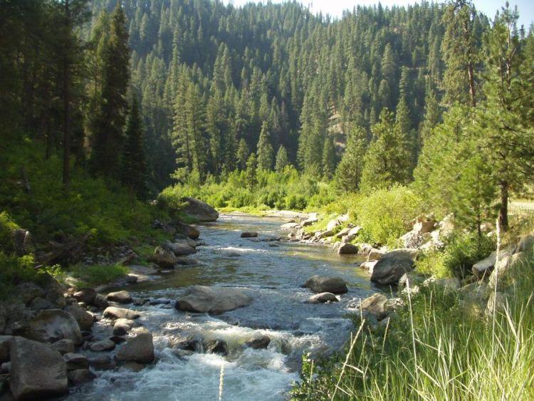 Boise national forest national forest foundation for Boise river fishing