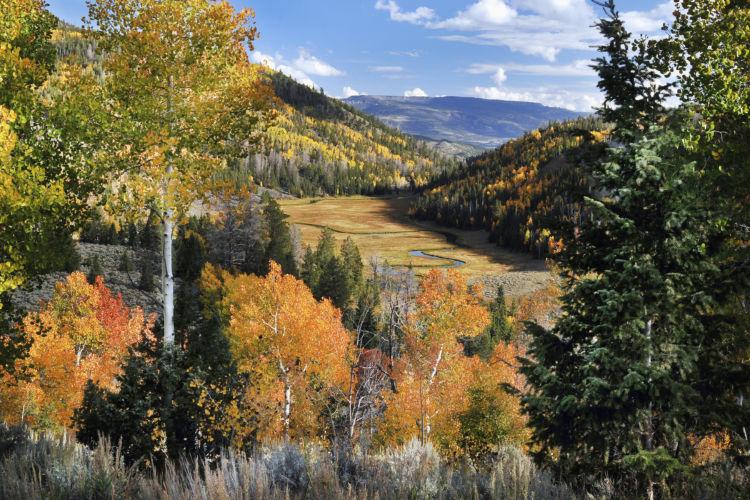 Fishlake national forest national forest foundation for Fish lake utah