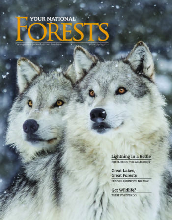 Your National Forests Magazine Winter/Spring 2019 Cover