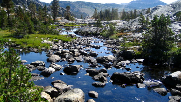 Inyo national forest national forest foundation for San joaquin river fishing