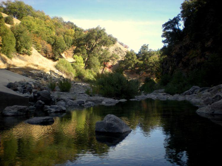 Mendocino National Forest Foundation