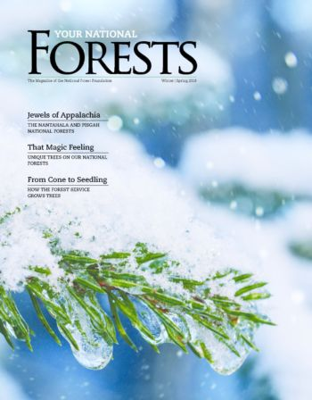 Your National Forests Magazine Winter/Spring 2018 Cover