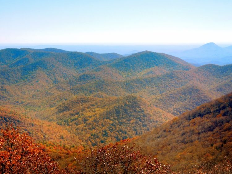 Nine Vibrant National Forests to Visit During Fall