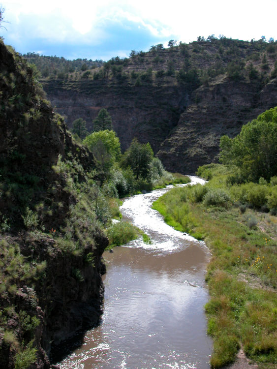 Gila national forest national forest foundation for Gila river fishing