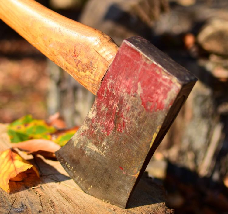 The Elemental Axe - National Forest Foundation
